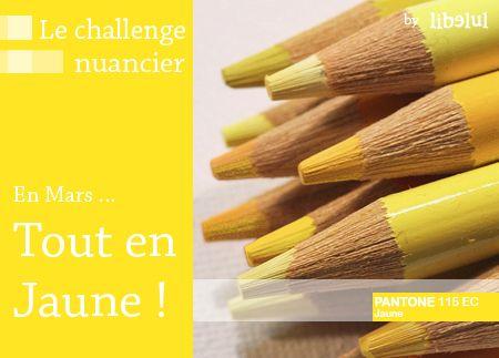 201102-challenge-nuancier-jaune-by-libelul.jpg
