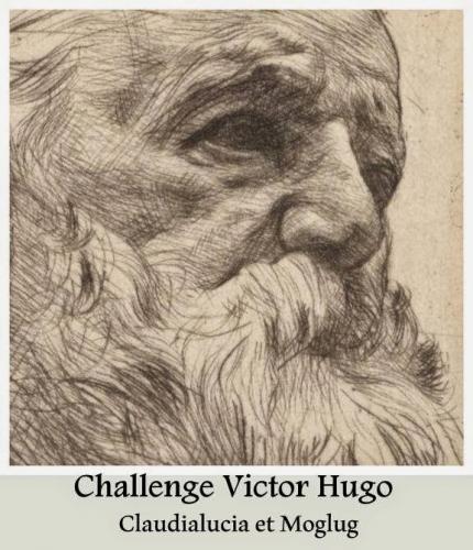 challenge hugo.jpg