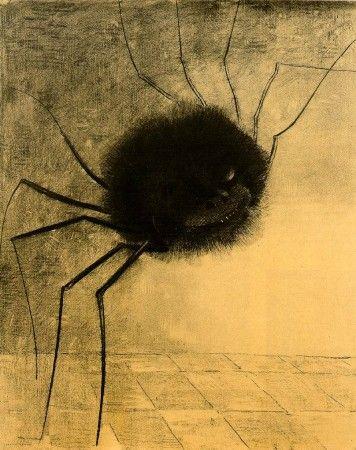 l'araignée souriante.jpg